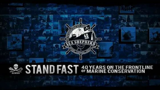 40 years Sea Shepherd